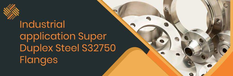 Industrial application Super Duplex Steel S32750 Flanges